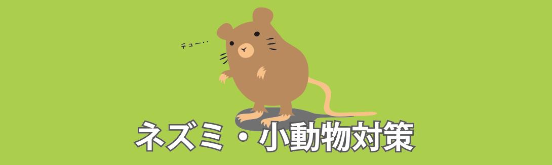 ネズミ・小動物対策