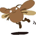 クロゴキブリは飛ぶよ