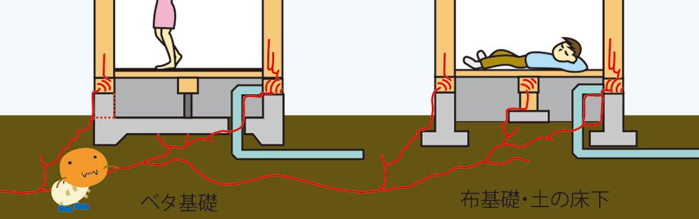 ベタ基礎と布基礎のシロアリ侵入経路